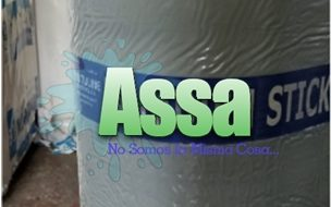 Bienvenidos a ASSA 21