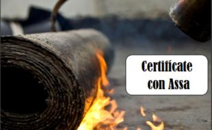Cursos y Certificaciones 3