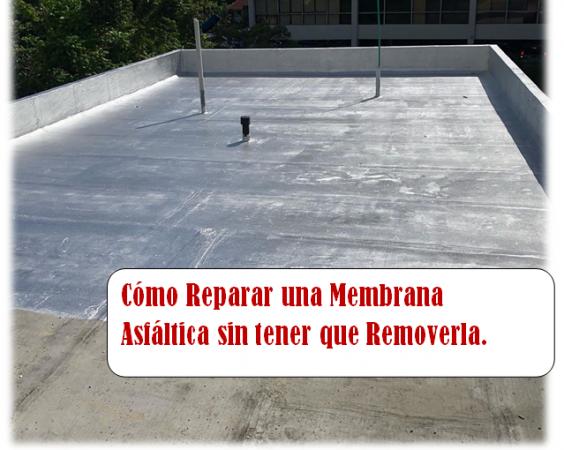 membranar-564x450.png
